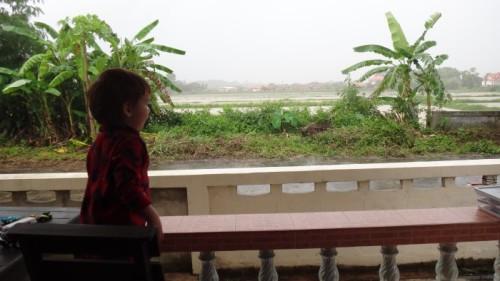 Rainy days here in Chiang Rai